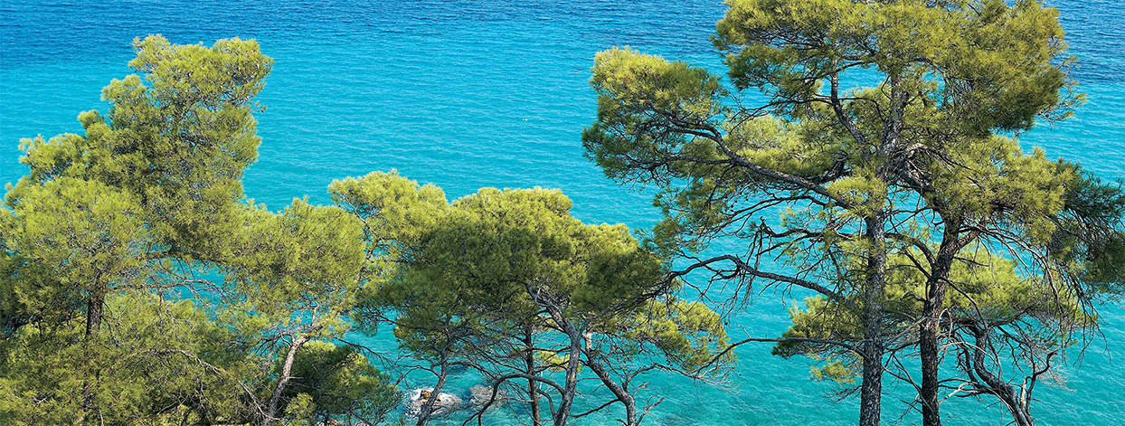 1-Halkidiki-Best-Beaches