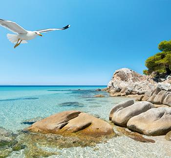 pella-beach-chalkidiki-luxury-hotel