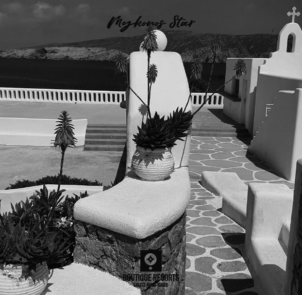 02-mykonos-star-resort-in-greece_bw