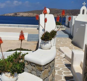 mykonos-star-holidays-in-grecotel-resort_thumb