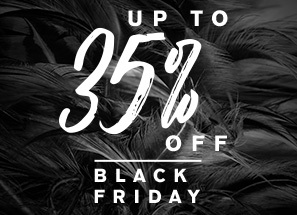 black-friday-cyber-monday-offer-sm